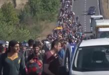 imigranci.png