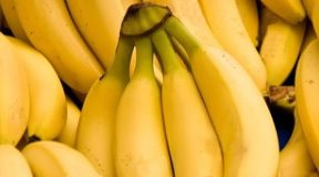 banany.jpg
